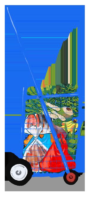Pasar shopping trolley